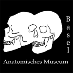 anatomisches museum basel