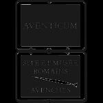 site et musee romain aventicum